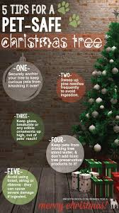 Christmas Tree Preservative Recipe by Our Blog U2013 Wee Cleaner