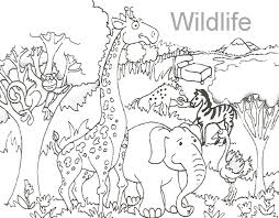 Obsession Wildlife Coloring Books 5 At Pages With For Wild Animal