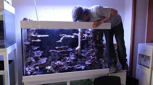 Real Reef Rock Display 3