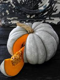 Organic Pumpkin Seeds Bulk by Jarrahdale Pumpkin Heirloom Seeds Vegetable Seeds Sustainable