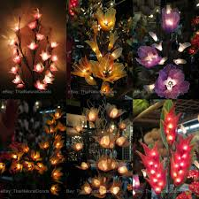 Ebay Christmas Trees With Lights by New Wooden Hanging Lamps From Coconut Shell Asian Night Lights