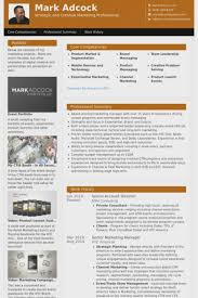 Senior Pastor Resume Example Ideal Sample Of A Pastors Resumes For Youth Dennisrodie