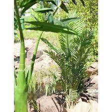 120cm europalms kentia palme kunstpflanze