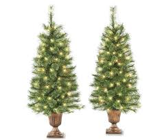35 Dancer Pre Lit Cashmere Artificial Christmas Urn Trees 2 Pack At