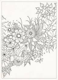 Flowers With A Frog Drawing Secret Garden Flores Com Sapo Jardim Secreto Johanna Basford Coloring Page