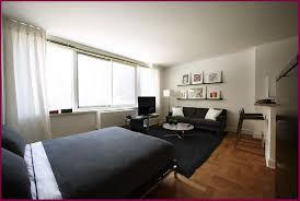 100 Small One Bedroom Apartments Best Photo Of Apartment Decorating Decorpasscom