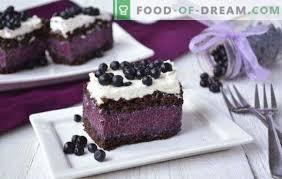 kuchen mit blaubeeren ist fantastisch rezepte für