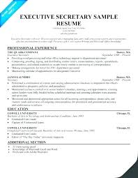 Secretary Curriculum Vitae Sample Resume Medical Examples New Free Guide Cv Example