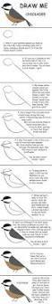 Nystrom Desk Atlas Online by 7 Best My Birds Images On Pinterest Backyard Birds Birdwatching