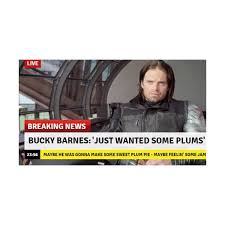 Bucky Plums Liked On Polyvore Featuring Sebastian Stan