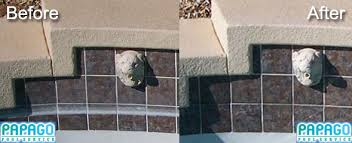pool tile cleaning scottsdale az papago pool service