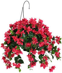 Amazon House Of Silk Flowers Artificial Watermelon Red Bougainvillea Hanging Basket Home Kitchen