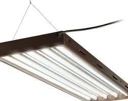 lighting enchanting fluorescent light 4ft 88 4 ft light