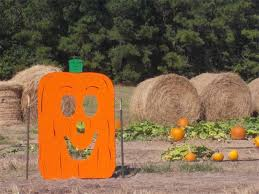 Pumpkin Patch Bastrop County by B U0026m Farms Pumpkin Patch Texas Haunted Houses