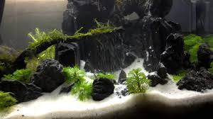 Aquascape Sand Waterfall - YouTube Aquascape Waterfall Tjupinang Part 2 Youtube Modern Aquarium Design With Style For New Interior Aquascape Low Cost My Waterfall Nhaquascape Pro Pondwater Feature Pumpschester Rockingham Diy Pondless Waterfallsbackyard Landscape Ideasmonmouth Nj Aqualand Nighttime Winter By Inc Photo Projectswarwickorange Countynynorthern Its Called Strenght Of A Thousand Stone Backyard Waterfalllow Maintenance Water Just Add And Patio Amazoncom Kit 3 W Free Led 3light