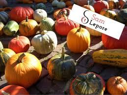 Pumpkin Picking Nj 2015 by 15 Halloween U0026 Fall Activities In Burlington U0026 Camden Counties