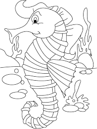 Seahorse Ordering No Back Biting Coloring Pages