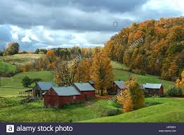Barns In Vermont In The Fall Stock Photo, Royalty Free Image ... Xlentcrap Barns Flowers Stuff 2009 In Vermont The Fall Stock Photo Royalty Free Image A New England Barn Fall Foliage Sigh Farms And Fecyrmbarnactorewmailpouchfallfoliagetrees Is A Perfect Time For Drive To See National Barn Five Converted Rent This Itll Make You See Red Or Not Warming Could Dull Tree Dairy Cows Grazing Pasture With Dairy Barns Michigan Churches Mills Covered Mike Of Nipmoose Engagement Beauty Pa Leela Fish Rustic Winter Scene Themes Summer Houses Decorations