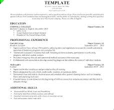 Cashier Resume Samples Examples Of Resumes For Cashiers Sample Lead Sales Associate
