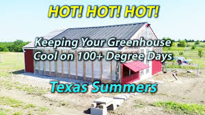Using Shade Cloth In Texas Heat - Greenhouse - Backyard Aquaponics ... Myfood Permaculture And Smart Aquaponic Greenhouse How Do I Get Started In Aquaponics Picture Fish Tank Ft At Back Above Grow Tribe Awesome Backyard Home Wamp4 Youtube Ezgro Garden Hydroponic Vertical Container Kits Introduction To Photo With Terrific Developing Our System The Uk To Build Your Own Aquaponics Fish Tank Diy Maret 2017 Greenhouse Outdoor Fniture Design Ideas Sistem For Aquaponic February 2015