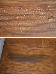 Stop Squeaky Floors From Above by Where Is This Random Moisture Migration Coming From Wood Floor