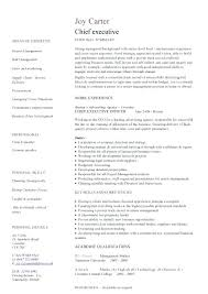 Retail Executive Resume Example Page 1 Cv Template Australia