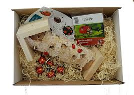 Ladybird Gift Box - A Great Gardening Gift: Amazon.co.uk: Garden ... Alisa Matthews Uxui Designer Food Trek Ladybirds 62 Photos 49 Reviews Bars 5519 Allen St The Book Reviewthe Ladybird Of The Hangover Youtube Stoops Chef Crew Hosts Thai Popup At My Table Almost Perfect Pear Bread Lady Bird Truck Nine Trucks You Should Chase After This Fall Eater Houston Haute Wheels Festival 2013 Event Culturemap Ladybird Grove And Mess Hall How It Works Baby For Grownups Grown Texas Guide To Of The British Isles Amazoncouk Harry Styles