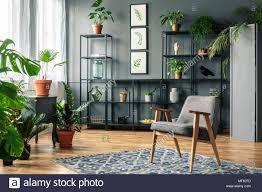elegante grau wohnzimmer einrichtung mit pflanzen auf