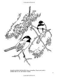 Fifty Favorite Birds Coloring Book Dover Nature Lisa Bonforte 9780486242613