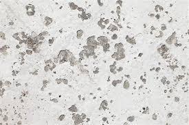 White Painted Cement Floor With Chipped Paint Saint Jean De Luz