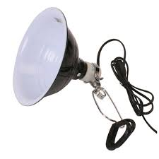 Reptile Heat Lamps Safety by Reptile Lights Lighting Systems U0026 Supplies That Pet Place