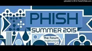 Phish Bathtub Gin Magnaball by Phish
