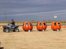 Best Pumpkin Patch Wichita Ks by 12 Of The Usa U0027s Best Pumpkin Patches To Visit This Fall