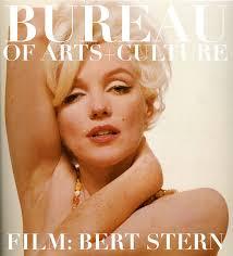 Tortilla Curtain Book Pdf by Bureau Magazine Literature Project Literary Interviews Articles
