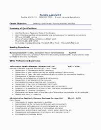 Lpn Resume Summary Examples Best Of Short Cna Intoysearch
