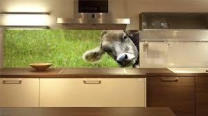 die 18 besten ideen zu glasrückwand küche glasrückwand