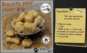 cuisiner pour chien biscuits pour chien atelier enfants les p tites recettes