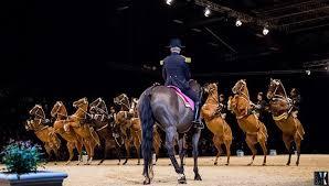 équitation au zénith de rouen le cadre noir de saumur actu fr
