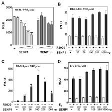 The Resistance Mechanisms Of Proteasome Inhibitor Bortezomib