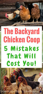 632 Best Backyard Chickens & Ducks Images On Pinterest | Chicken ... 1084 Best Raising Chickens In Your Back Yard Images On Pinterest 682 Chicken Coops 632 Backyard Ducks Keeping Backyard Chickens Agriculture And Food 100 Where To Buy Or Meet The Best 25 Ideas Pharmacologist Warns That Eggs From Pose Poultry Poultry Hub 7 Reasons You Should Raise 50 Pams