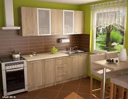 KitchenExquisite Small Kitchen Design With Brown Tile Wall Backsplash Including Wooden Cabinet Plus Green