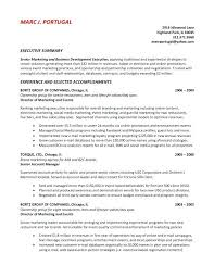 Examples Of Summary On Resume Good Executive Example Career Marketing