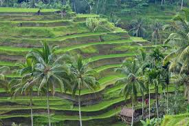 1 Of Tourist Attractions In Indonesia