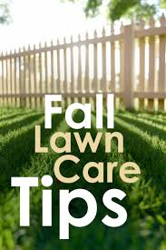 Medina Tn Pumpkin Patch by 14 Best Yard Care Tips For The First Time Home Buyer Images On