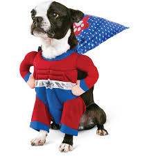 Flash Sale @ Petco $30 Off $100 - Dealmoon Red Birthday Card Personalised Socks Solesmith Small Business Spotlight Supercan Bully Sticks Eskieantics The Ultimate Pet Parent Guide Healthy Paws Insurance Girl And The Water Promo Code Vintage Pearl Coupon About Us Petcaresupplies Pharmacy Items On Sale 15 Off Free Birthdaycarforkids Photos Images Pics Lureshop Eu Discount Code Keywordsfindcom Voucher Codes Best For September 2019 Petlandia Book Review With Promotional By Turbotabby Illustrations Hashtags Deal To Earn Likes Instagram Tagsetscom