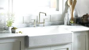 kohler porcelain double kitchen sink rot care white intunition com