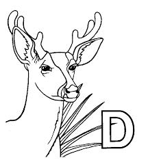 Deer Coloring Pages 15