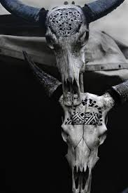 Decorated Cow Skulls Pinterest by 25 Best Longhorn Tattoo Ideas On Pinterest Deer Skull Drawing
