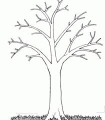 Tree Without Leaves Coloring Page Printable Pages Big Intended For Amazing