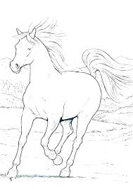 Arabian Horse Coloring Pages Realistic Head Page Together With Horses Print